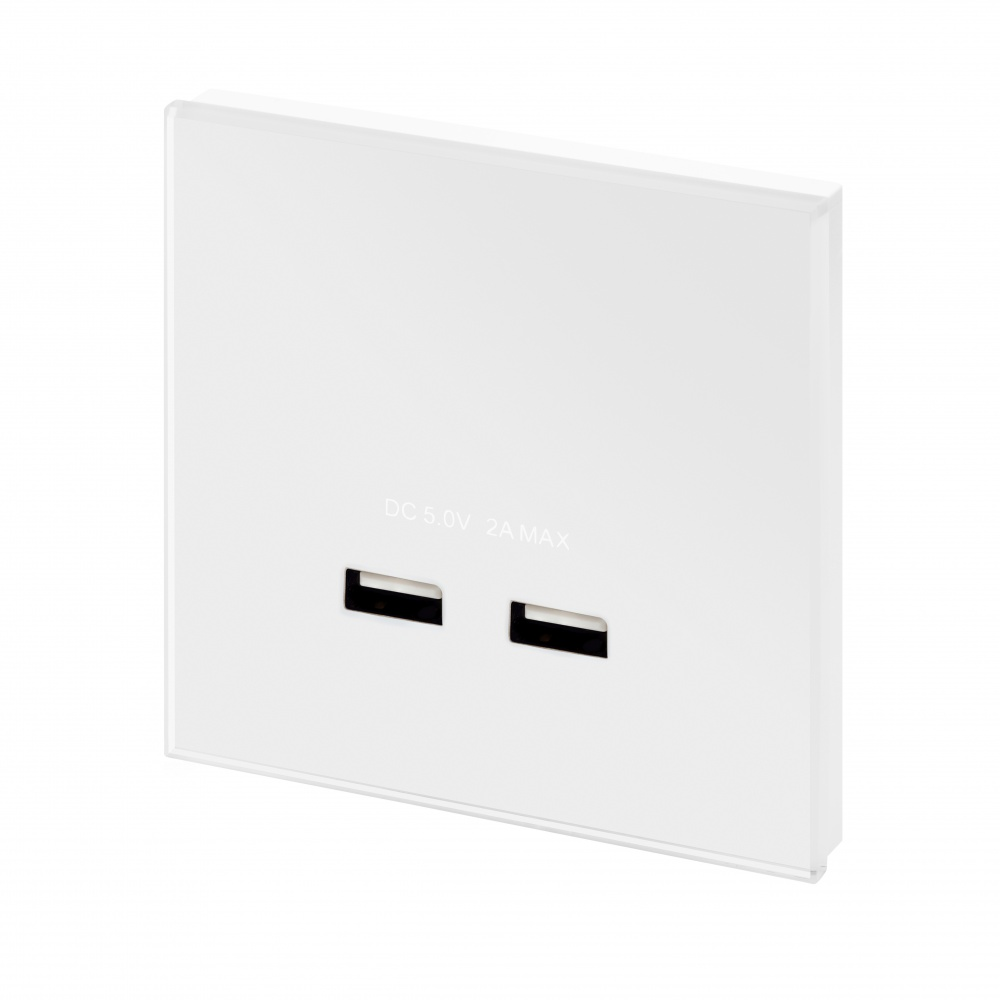 crystal pg dual usb charger single socket white