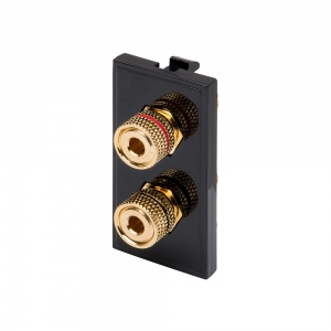RT Twin Speaker Post (25mm x 50mm) Black
