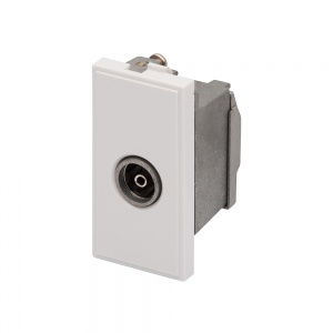 RT TV Female Outlet (25mmx50mm) White
