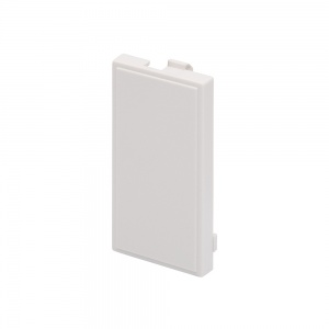 RT Blank Plate (25mmx50mm) White